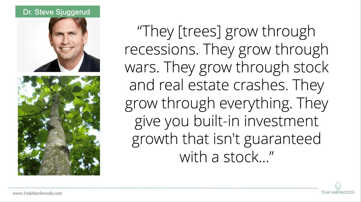 Steve_Sjuggerud_Quote_wealth_investment